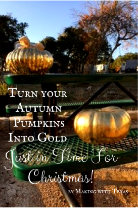 Turn your Autumn Pumpkins Into Gold.png