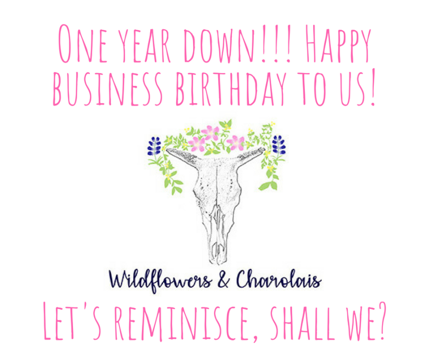 One year down!!! Happy business birthday to us!